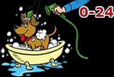 Wash & Vau Önkiszolgáló Kutyamosó