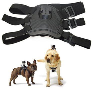 SJCAM SJ203 kutyahám - 2 rögzíthető kamerahely