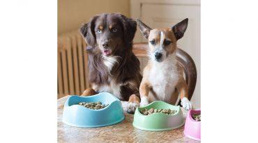BECO Bowl Kutyatál