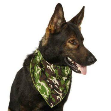 Camouflage Bandana - Terepmintás Kutyasál