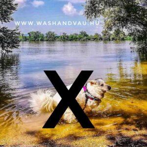 wash & vau önkiszolgáló kutyamosó franchise blog