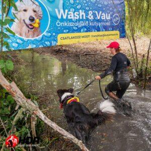 wash & vau önkiszolgáló kutyamosó franchise blog hard dog race hdr